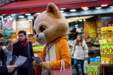 How much does a custom mascot costume cost?